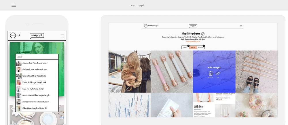 Instagram management with Snapppt