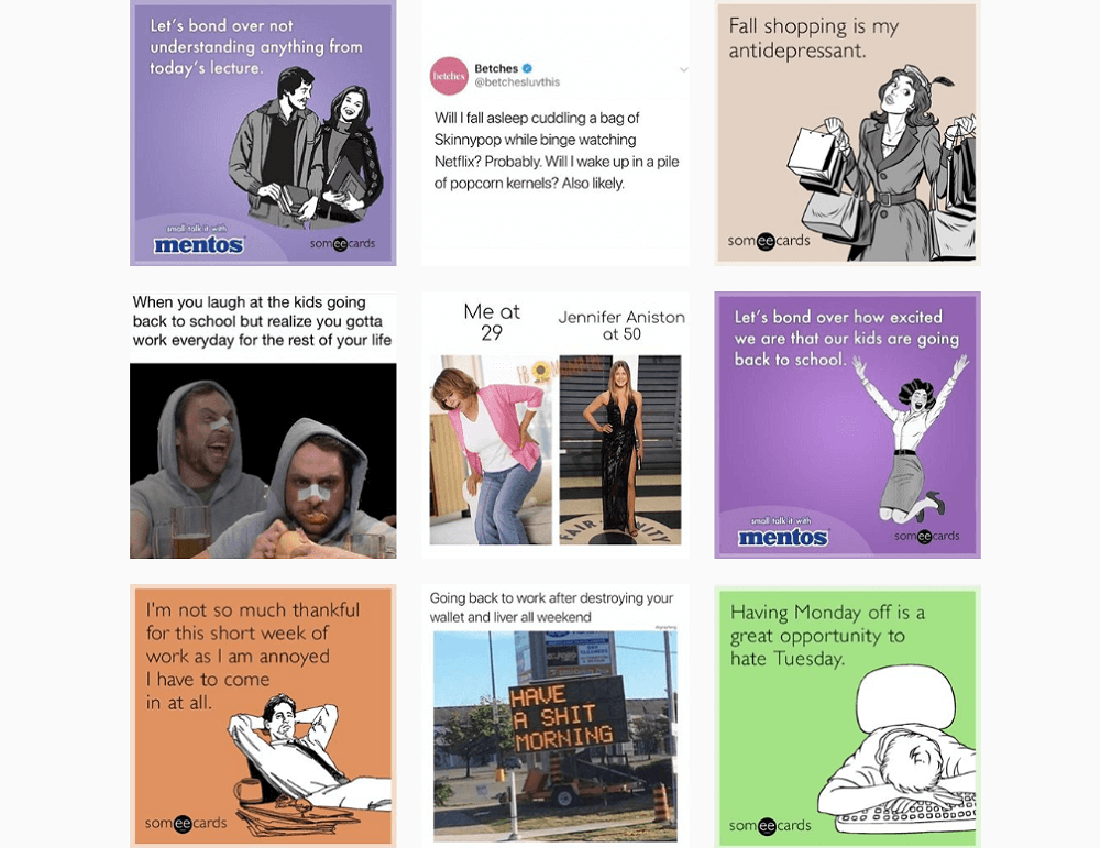 Who to follow on Instagram - someecards